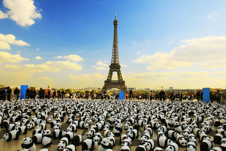 1600隻紙貓熊到台灣!