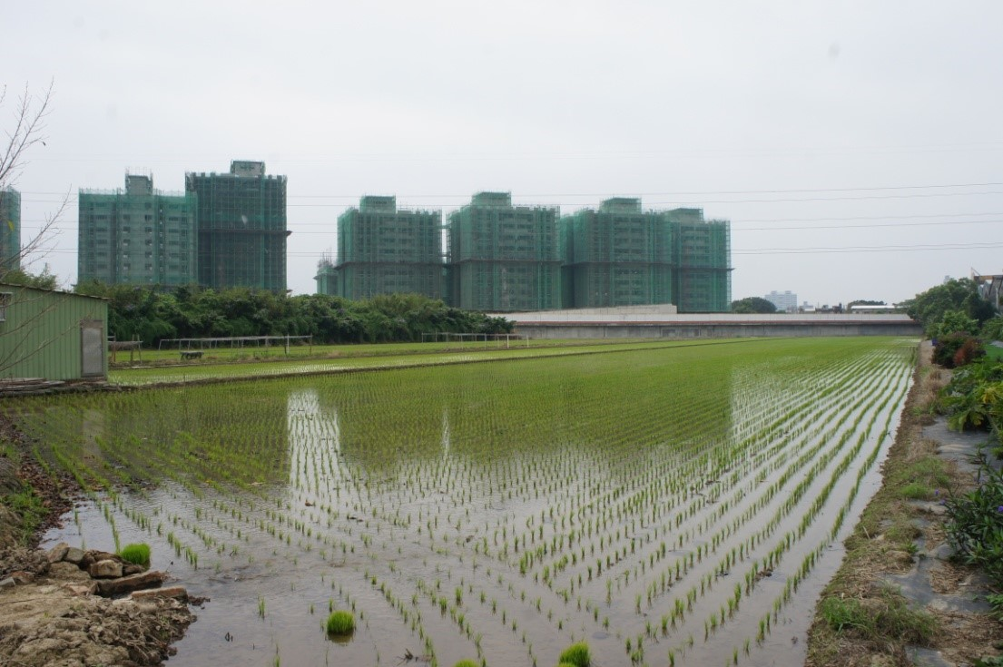 台北可以是有溫度的城市,如果我們不再「迷信」水泥