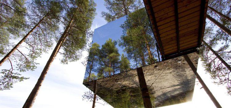 全球必住10間超美【樹屋飯店】在蟲鳴鳥叫中開始新的一天!