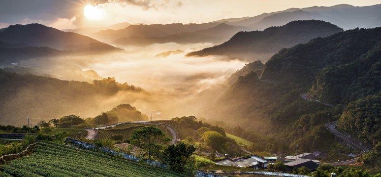 鳥與茶的家鄉 「坪林一日遊」親子同遊景點推薦!