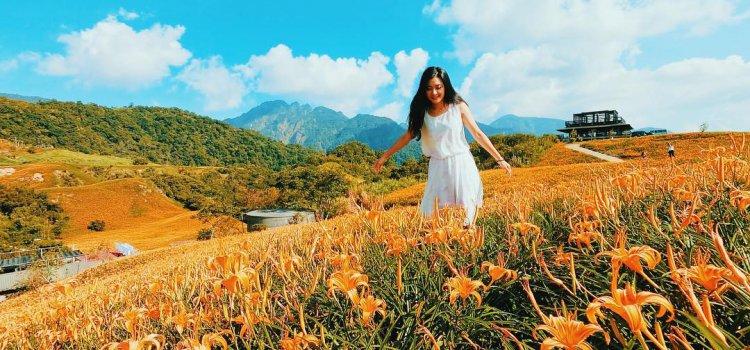 花蓮夏天限定「六十石山 金針花季」八月底盛開極大期 不可錯過!