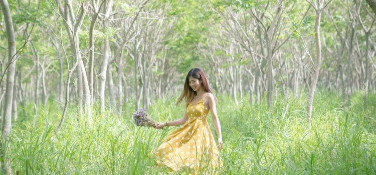 來到宮崎駿的異想世界!台中森林秘境「龍貓隧道 」!