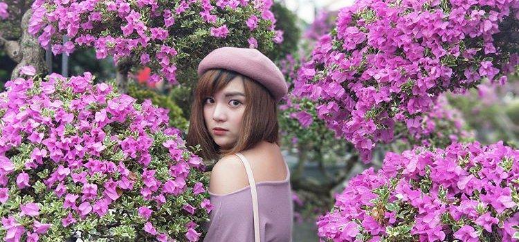【季節限定】夢幻花海再一發!彰化「九重葛迷宮」免費參觀。花團錦簇展現數大便是美!