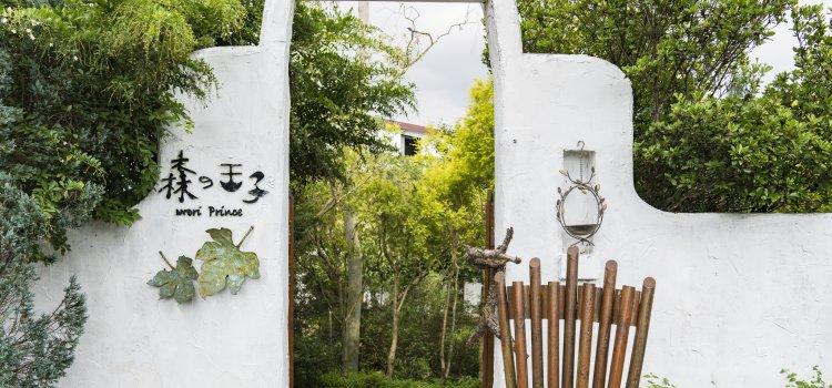 【OTOP 一鄉一特產】坐擁270度美景,新社森林秘境「森の王子」