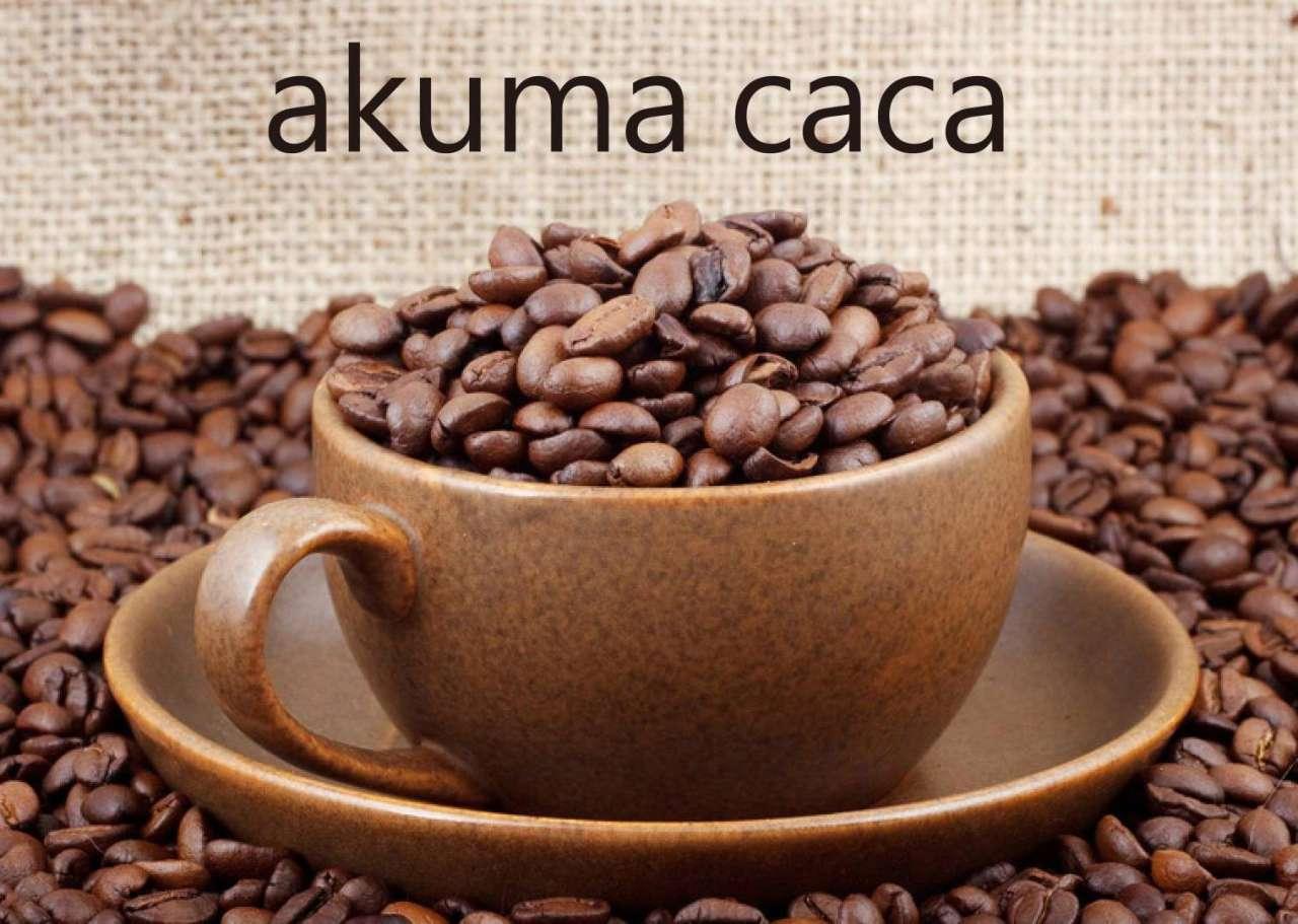 可可設計人文咖啡 ─ 設計與人文的白色時尚