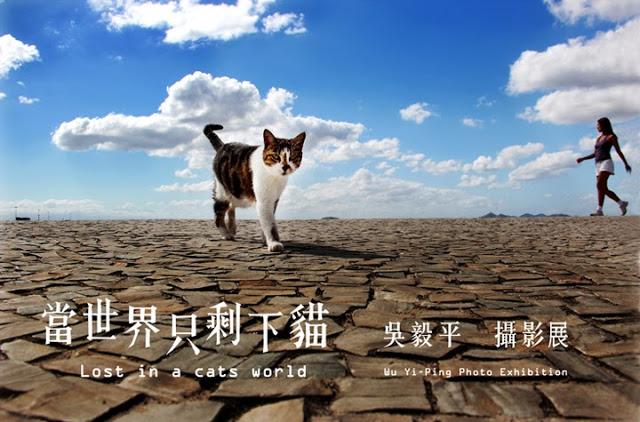 【當世界只剩下貓】吳毅平攝影展