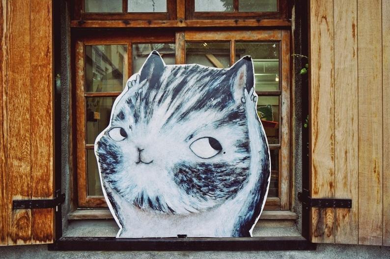 Emma_cat