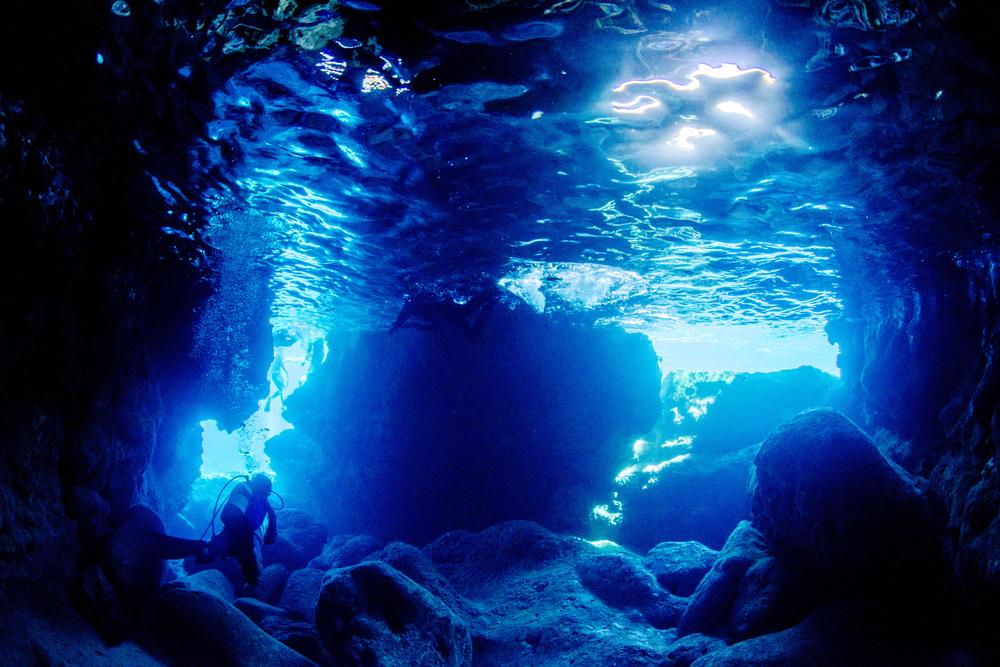 潛水季來臨【北部最強深海潛水】悠遊鼻頭角 探索熱帶魚、珊瑚 海底世界!