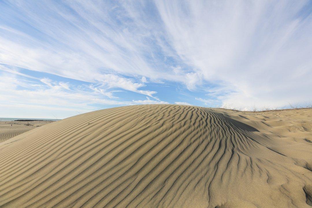 【網美必收藏】我真的沒出國!全臺3大「偽撒哈拉沙漠」大公開!