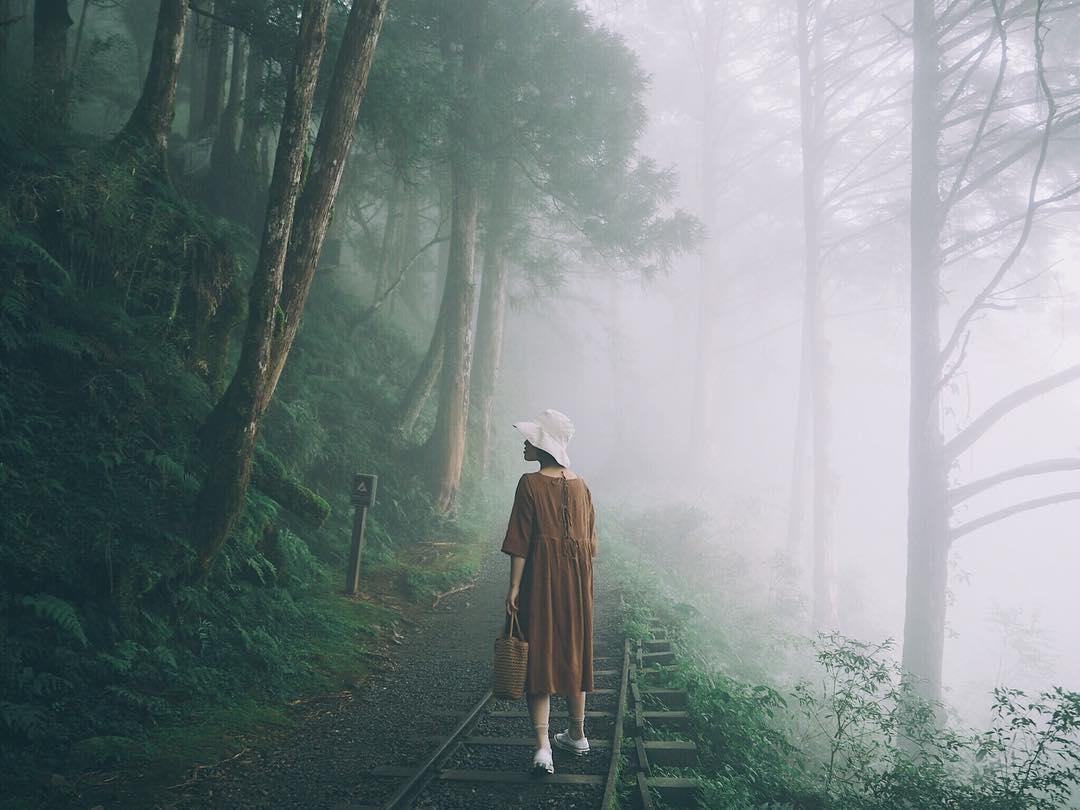 【全球最美28條小路】宜蘭上榜!絕美小徑「見晴懷古步道」!