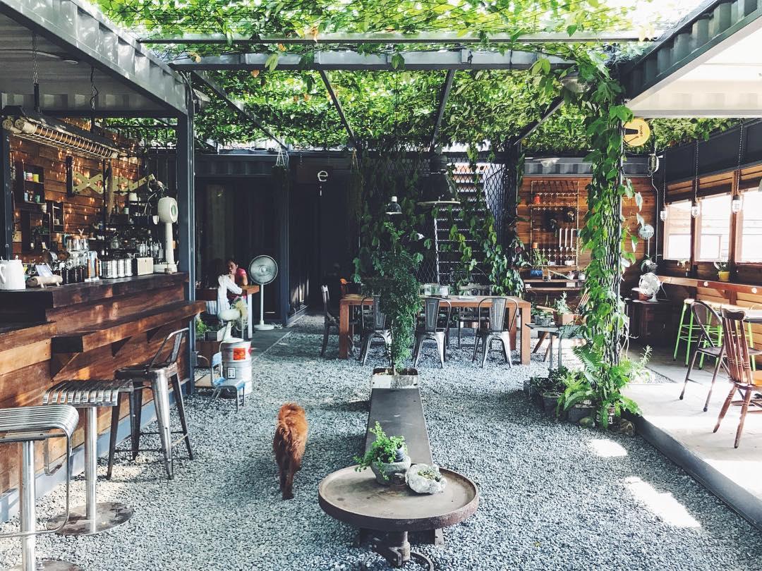 運氣不好喝不到?連咖啡廳也能變成秘境的 超神秘 ⌈溫室咖啡⌋!