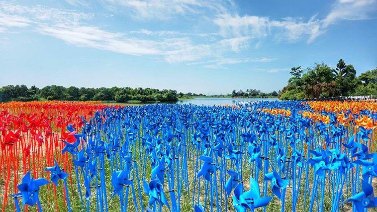 7000台風車齊旋轉!台南「德元埤荷蘭村」風車節。壯觀園區體驗荷蘭之美!