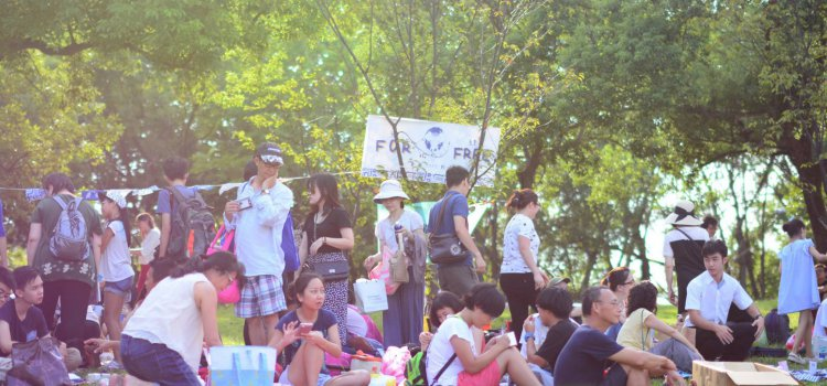 【2018宜蘭綠色博覽會】閉園慶豐收!「換物野餐日」相約草原中的二手市集。