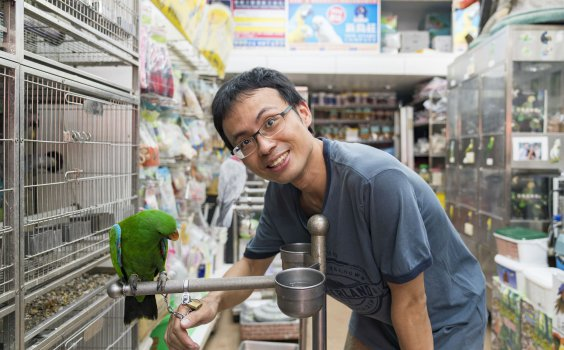 【生活誌專訪】萬華鳥街 – 新鳥莊。萬鳥齊鳴,昔日台灣的經濟榮景