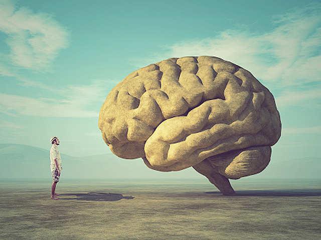 【大腦工作術】善用大腦的這 5 種喜好,讓你的工作、生活都事半功倍!